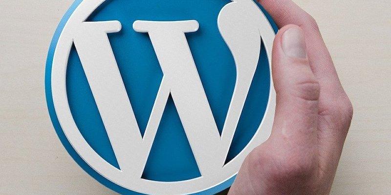 Someone holding the WordPress logo.