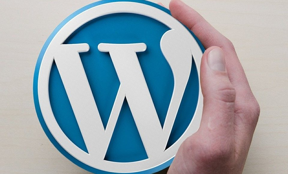 The WordPress logo, held by a hand.